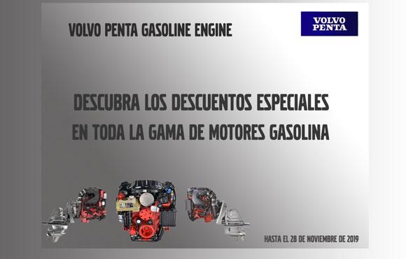 Volvo penta gasoline engine